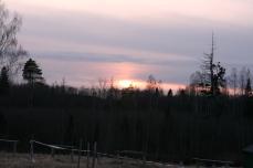 Oranžā Šnepīte 167